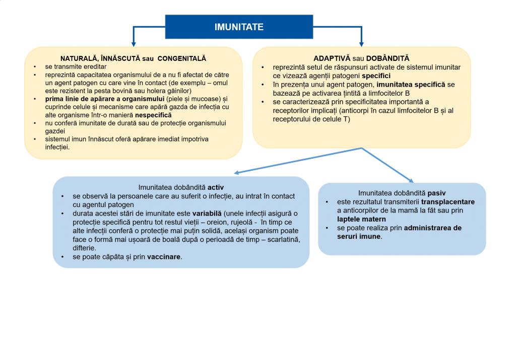 giardiaza gazdă răspuns imun)