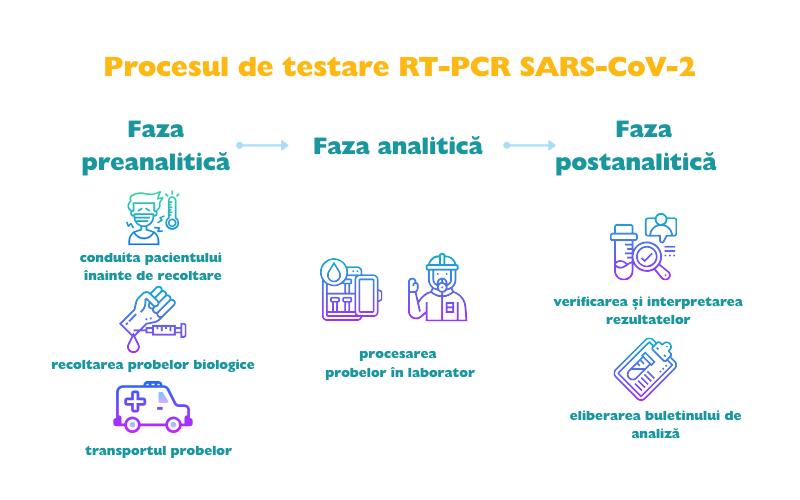 proces testare sars-cov-2, covid-19 rt pcr